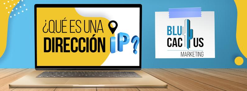 BluCactus - ¿Qué es una dirección IP? - titulo