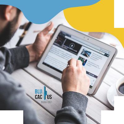 BluCactus - Hoeveel interne en externe inhoud berichten gaat u per maand maken?