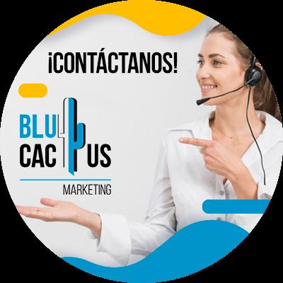 BluCactus - resumen