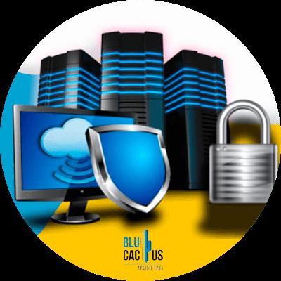 BluCactus - seguridad