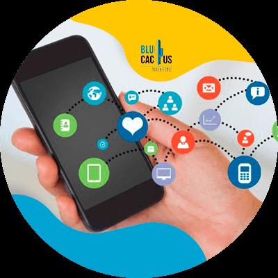 BluCactus - red social con información digital
