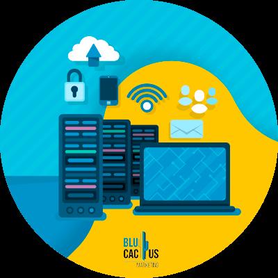 BluCactus - tipos de hosting