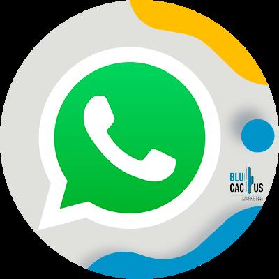 BluCactus - Psicología del color en la Publicidad para mi Negocio - whatsapp