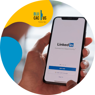 BluCactus - Estrategias para empresas en LinkedIn - app likedin