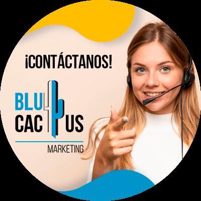 BluCactus - ¿Cuánto cuesta un Menú Digital para Restaurantes? - contactenos ya