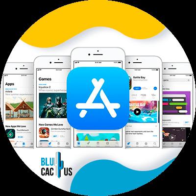 BluCactus - aplicacion