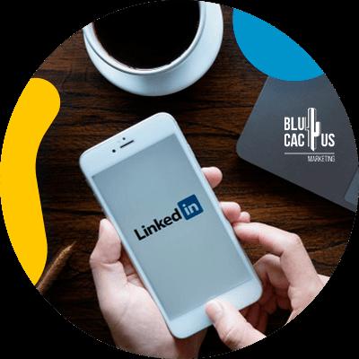 BluCactus - Stories de LinkedIn - persona profesional trabajando en linkedin