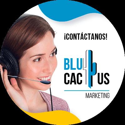 BluCactus -contactenos ya