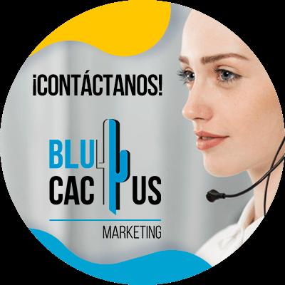 BluCactus -conclusión