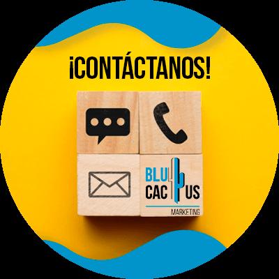 BluCactus - Objetivos en su empresa- contactenos
