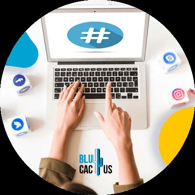 BluCactus - Marketing en redes sociales para marcas de moda - estadisticas en una computadora