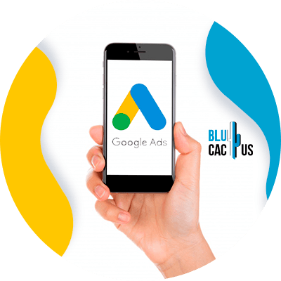 BluCactus - google adwords