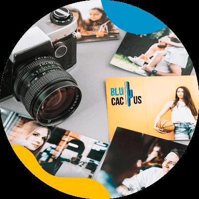 BluCactus - imagenes