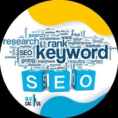 BluCactus - keyword research