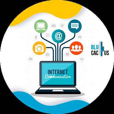 BluCactus - internet