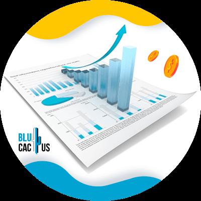 BluCactus - modelo de negocio