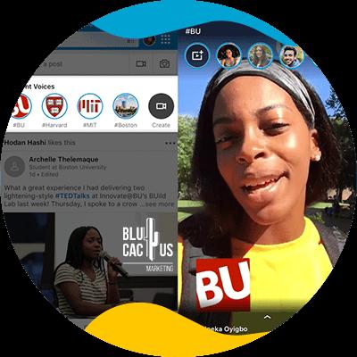 BluCactus - persona profesional trabajando en linkedin