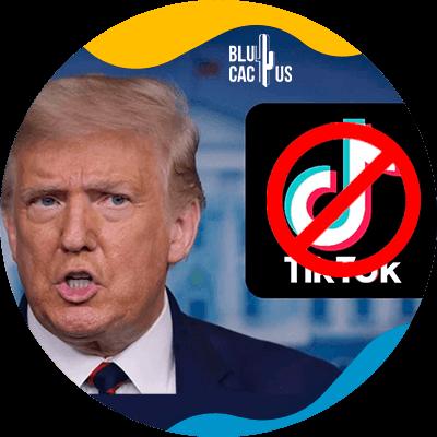 BluCactus - ¿Qué pasará con TikTok? - donald trump