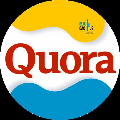 BluCactus - quora oficial