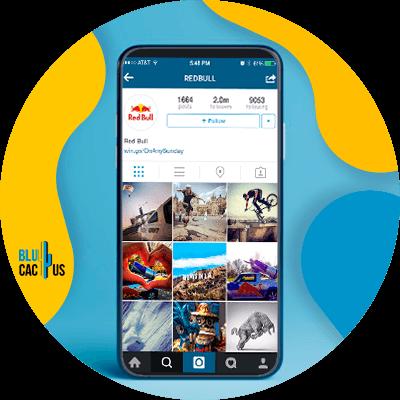 BluCactus - vender en Instagram- celular con la aplicacion de instagram abierta