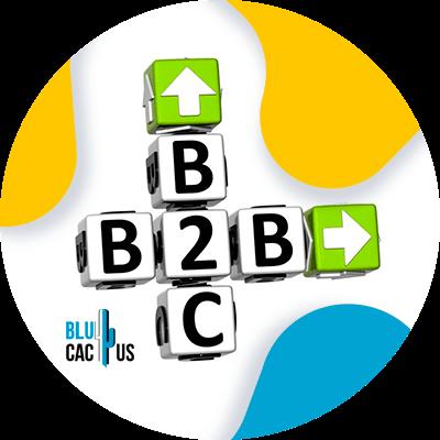 BluCactus - b2b
