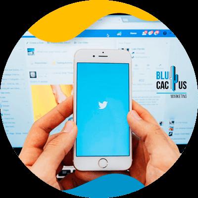 BluCactus - Seguidores en Twitter - aplicacion de twitter con informacion del tema