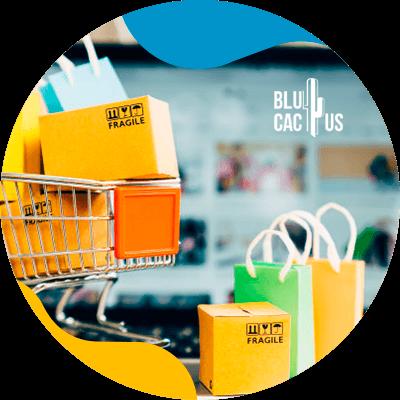 BluCactus - Vender moda en tiempos de crisis - usabilidad web