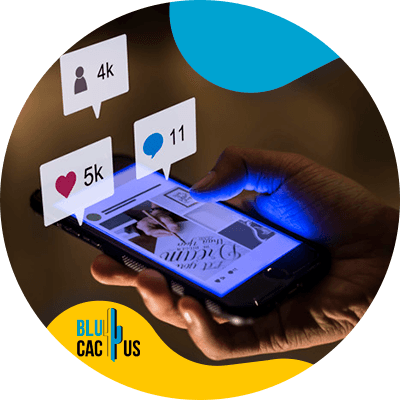 BluCactus - perfiles sociales