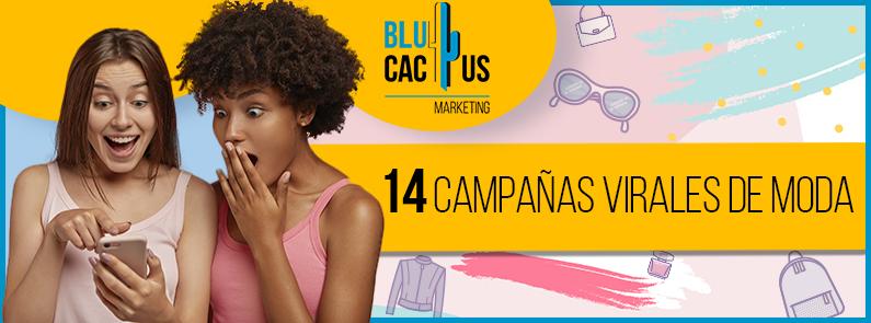 BluCactus -Las campañas virales más exitosas - title