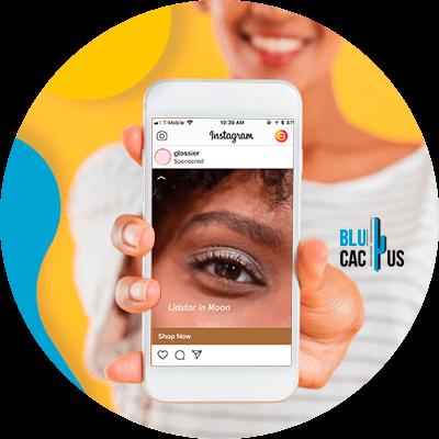 BluCactus -contenido del usuario