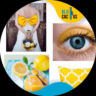 BluCactus - logo de una empresa de moda - amarillo