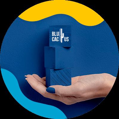 BluCactus - logo de una empresa de moda - azul