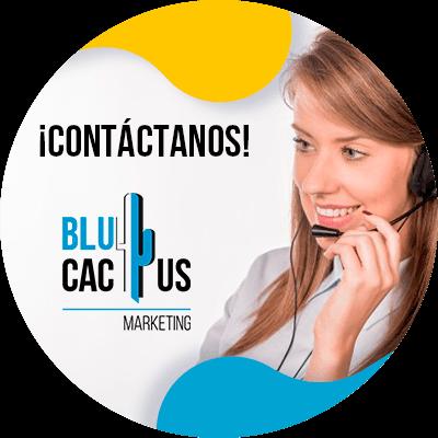 BluCactus - landing page para campañas de Google Ads - contacto