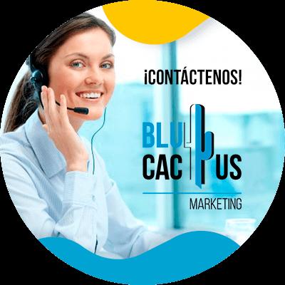 BluCactus - logo de una empresa de moda - contactenos