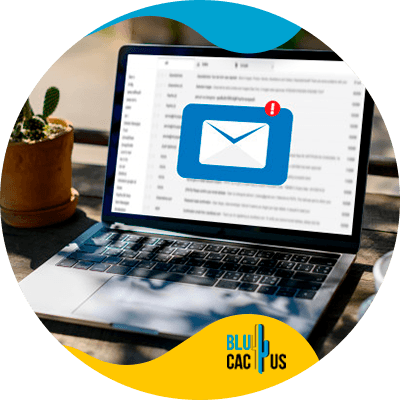 BluCactus - email marketing
