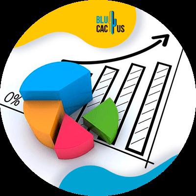 BluCactus - ventas graficas