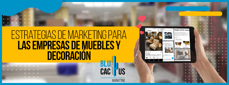 BluCactus - marketing para empresas de muebles y decoración. - titulo