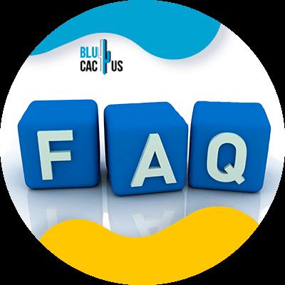 BluCactus - Diferencias entre una landing page y un sitio web - faq