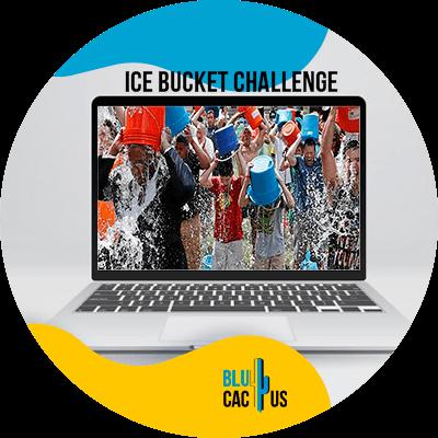 BluCactus - Las campañas virales más exitosas - ejemplo de campañas virales