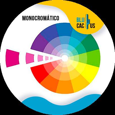 BluCactus - logo de una empresa de moda - monocromatico