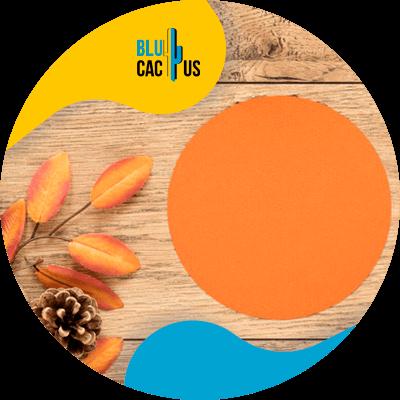 BluCactus - logo de una empresa de moda - naranja