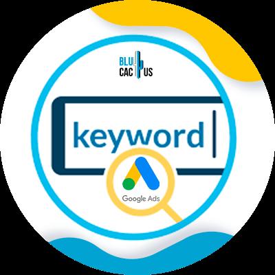 BluCactus - Segmentación para hacer publicidad - keyword