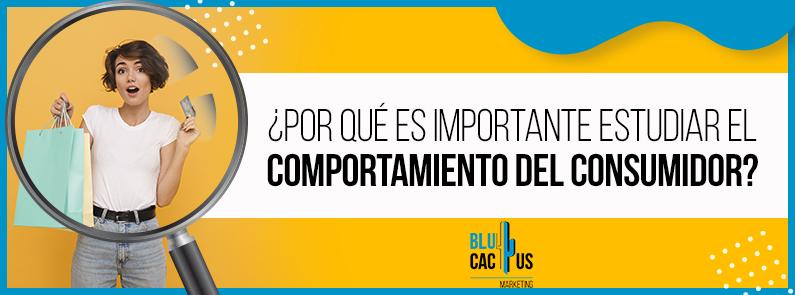 BluCactus - Comportamiento del consumidor - titulo