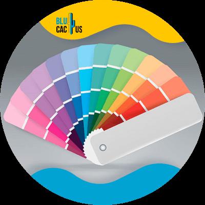 BluCactus - paleta colorida