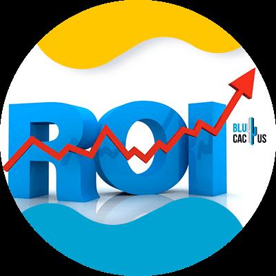 BluCactus - Segmentación para hacer publicidad - ROI