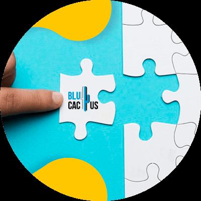 BluCactus - rompecabezas