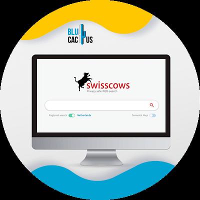 BluCactus - Motores de busqueda alternativos - ejemplo de un buscador de seo