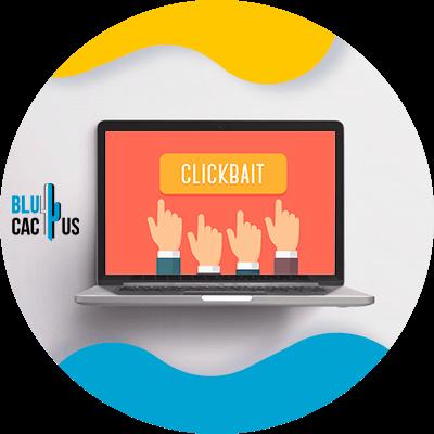 BluCactus - computadora