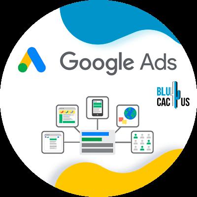 BluCactus - campañas