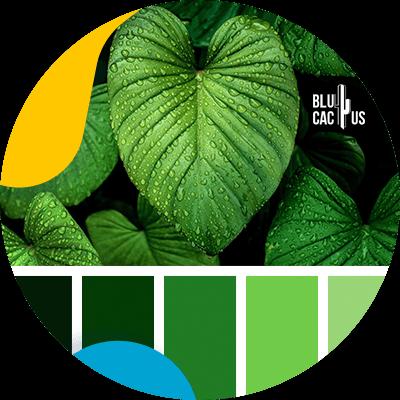 BluCactus - logo de una empresa de moda - verde